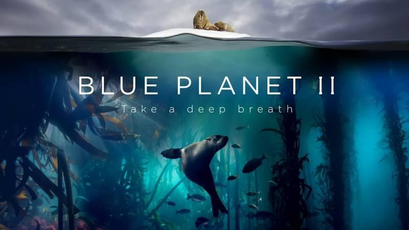 The Blue Planet 1 – 2 / Mavi Gezegen (2001, 2017)