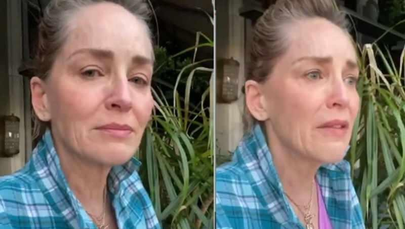 Sharon Stone haberleri