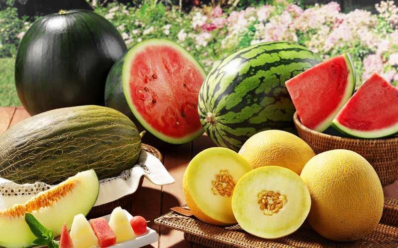 sıvı oranından en zengin besinler karpuz ve kavundur