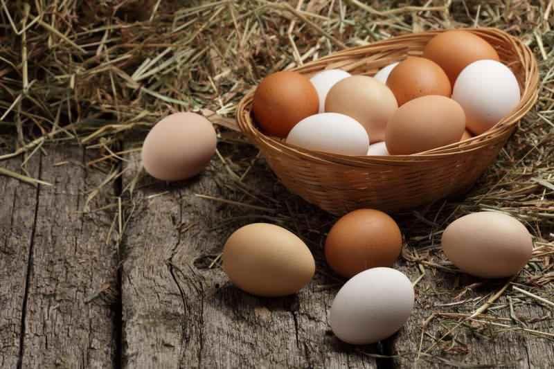 yumurta anne sütünden sonra gelen en faydalı besindir