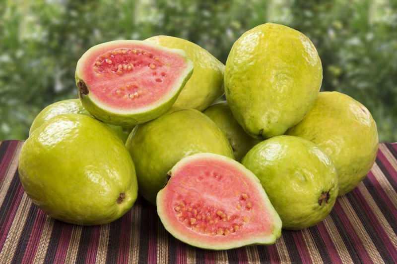 guavan meyvesi çilek olarak geçer