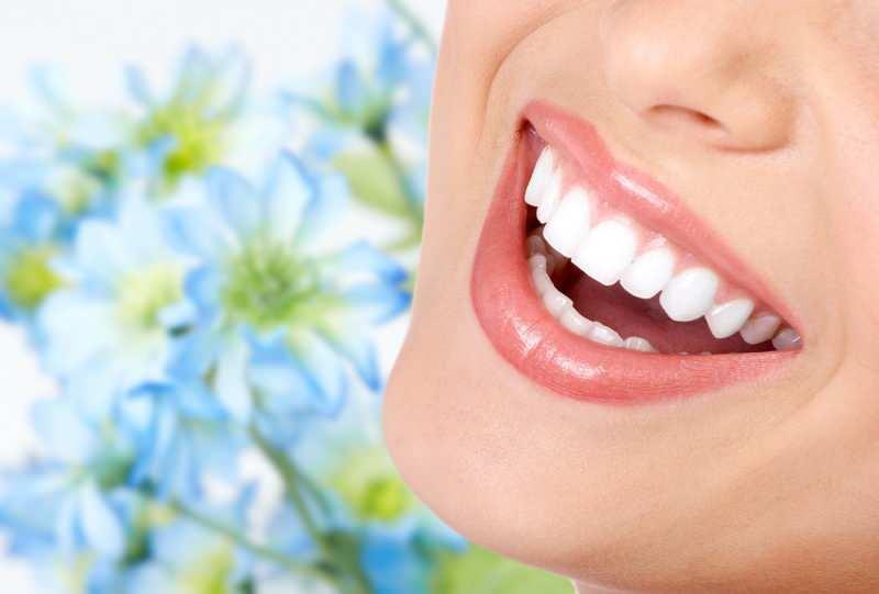 diş bakımı için yaprakları kullanılır
