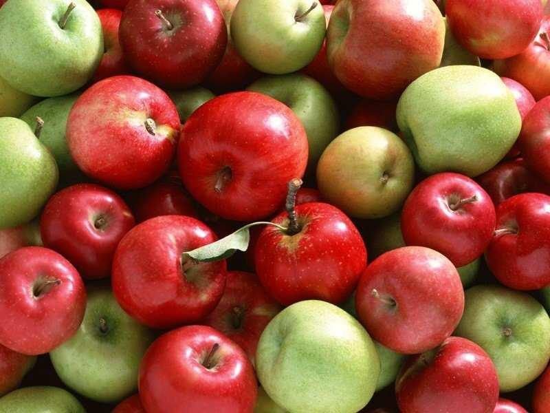 elma kötü kolesterolü düşürür