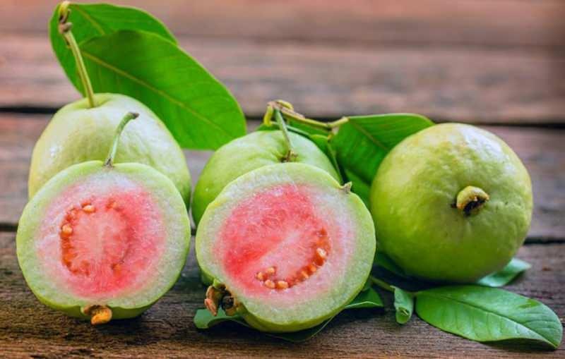 guavan domates gibi güçlü antioksidan içerir