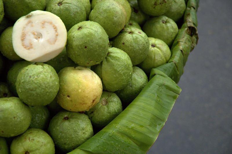 olgunlaşmamış guavan meyvesi