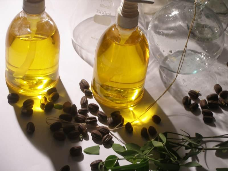 jojoba yağı cilt sağlığına faydalıdır