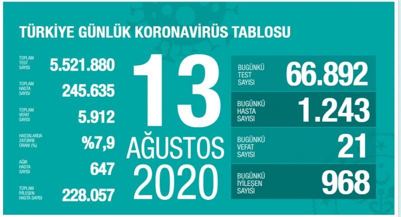 13 Ağustos koronavirüs tablsou, vaka, ağır hasta, can kaybı sayısı ve son durum