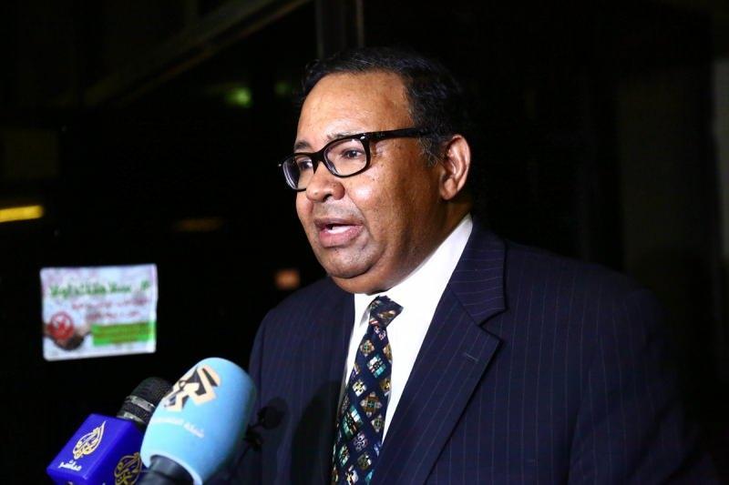 Sudan Dışişleri Bakanlığı Sözcüsü Haydar Badavi Sadık