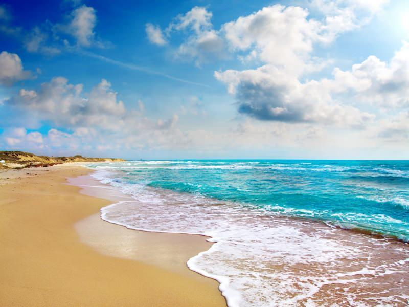deniz suyu vitamin ve mineral bakımından zengindir