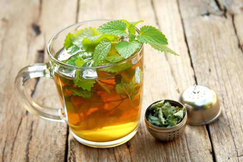 Melisa çayı ne işe yarar? Melisa çayı faydaları