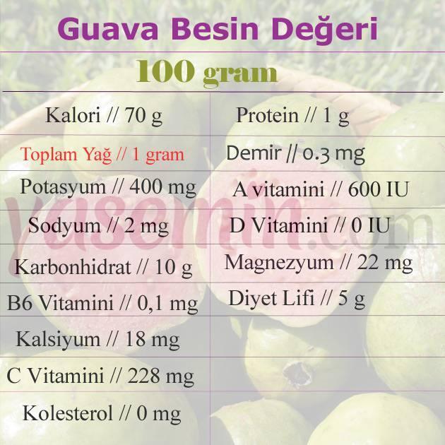 guava besin değeri