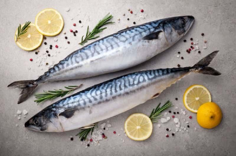 uskumru balığı cilt sağlığında da etkilidir