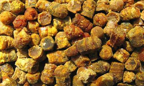 arı ekemği güçlü bir antioksidandır