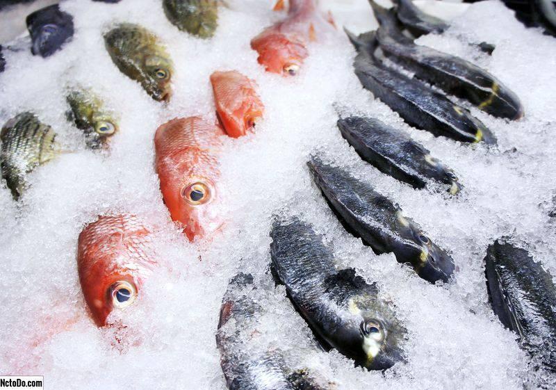 Dondurucuda balık nasıl saklanır