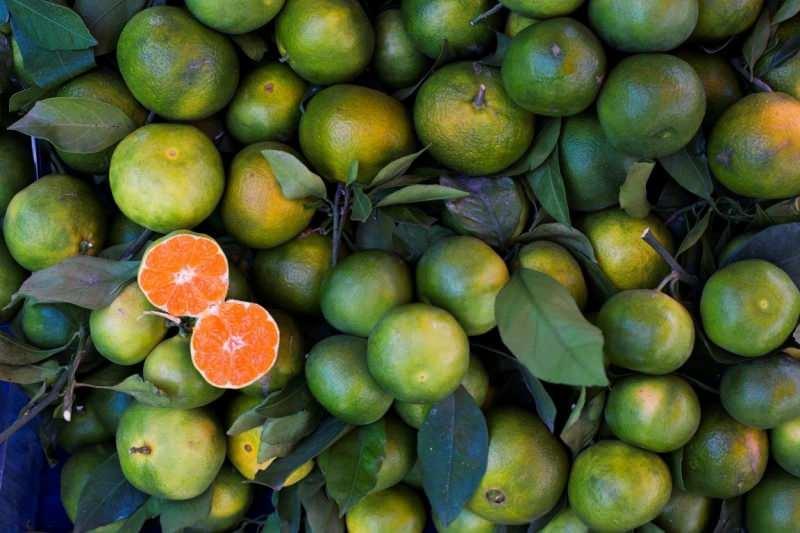 yeşil mandalina yüksek oranda antioksidan içerir