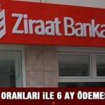 Halkbank düşük faizli 30 bin TL 6 ay ödemesiz ihtiyaç kredisi veriyor! Kredi başvurusu 2