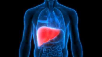 Karaciğer yağlanması neden olur? Karaciğer yağlanmasına iyi gelen besinler