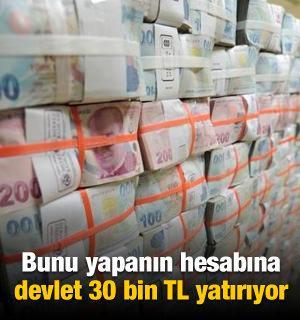 Bunu yapanın hesabına devlet 30 bin TL yatırıyor