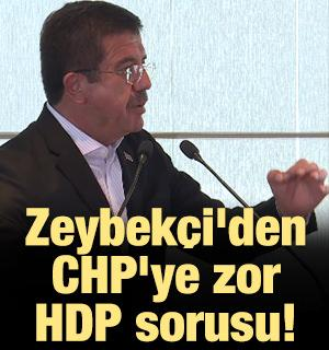 Zeybekçi'den CHP'ye zor HDP sorusu!